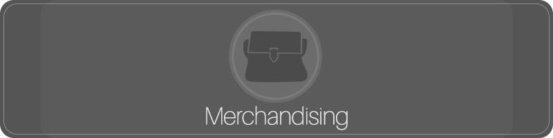 Como Ganhar Dinheiro Com Blog - Merchandising